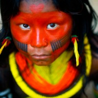 Indigenous Glance