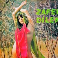 Zafer Dilek - Oyun Havalari (1977)